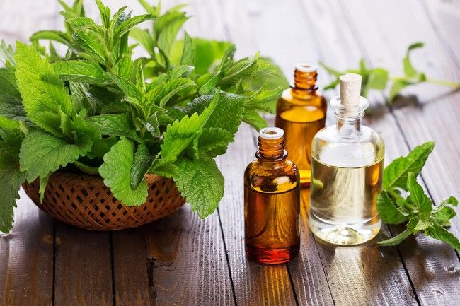 Is Peppermint Oil Safe During Pregnancy