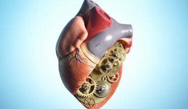 Difference Between Heart Disease and Heart Failure