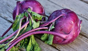 Kohlrabi or a German turnip