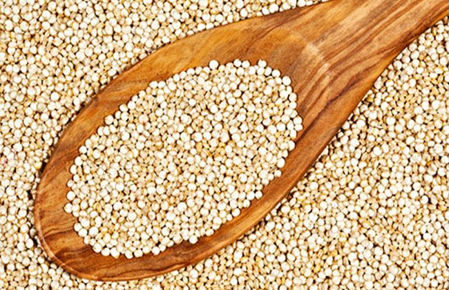 Does Quinoa Help Lose Weight