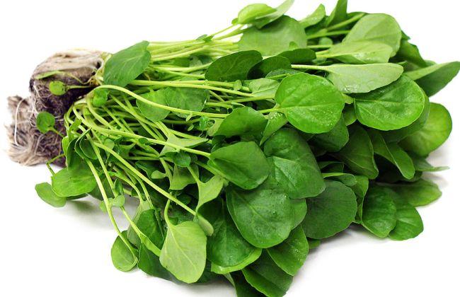 Best Watercress Salad