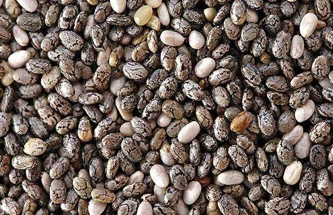 Cheer Seeds Weight Loss