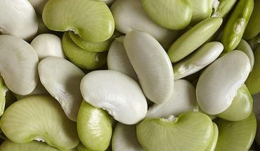 Lima Beans - Diet with Beans