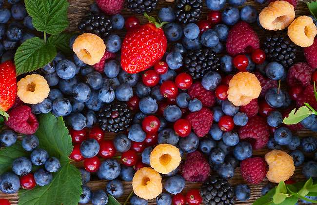 Nutritional Value of Berries