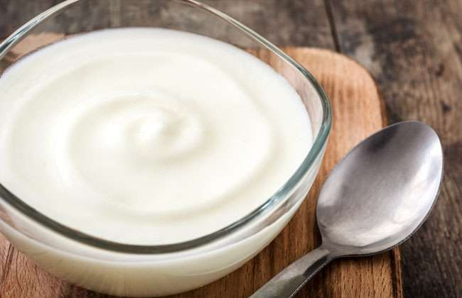 Can Yogurt Help Lose Weight