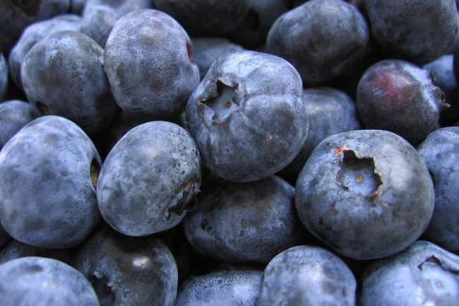 Do Blueberries Have Fiber