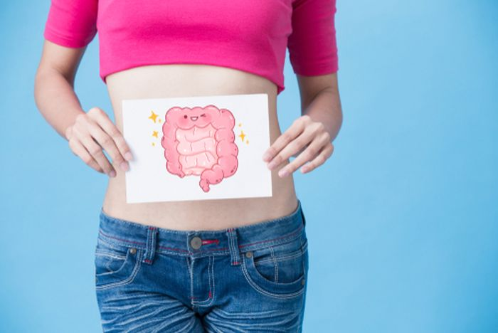 Effect of sugar on gut bacteria