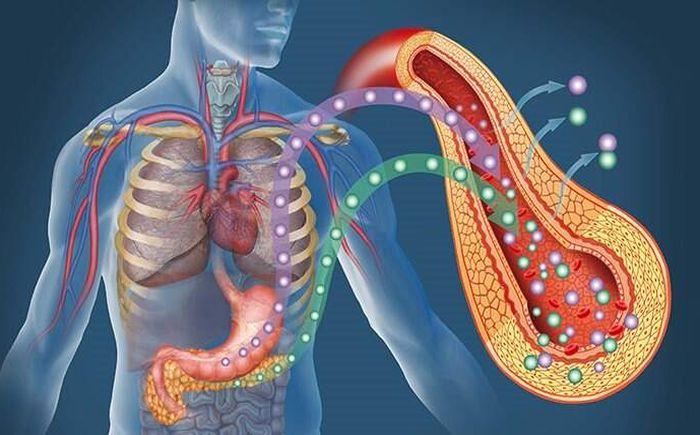Is sugar bad for pancreas