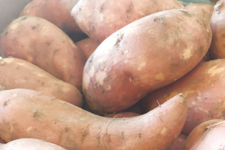 Best Potatoes for Diabetics